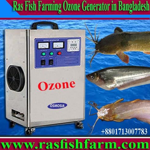 RAS / Recirculating Aquaculture Systems Indoor Fish Farming
