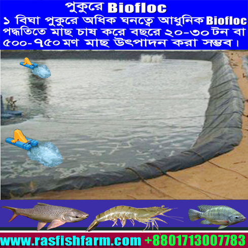 Biofloc Technology Biofloc System In Bd Biofloc Technology In Bd Biofloc Tank In Bd Biofloc Tank Price In Bd Biofloc Fish Tank Price In Bd Biofloc Fish Tank Supplier Price In Bd