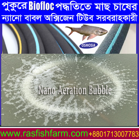 Biofloc Technology Biofloc System In Bd Biofloc